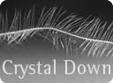 crystal down