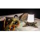 Lanterne HELIX Backcountry Princeton Tec